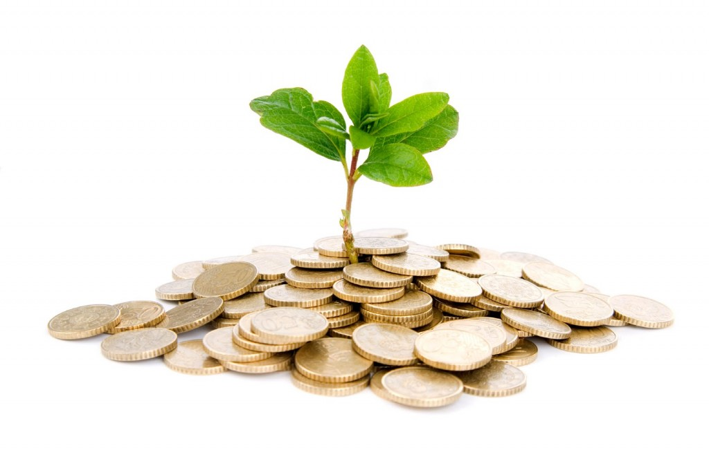 ¿Cómo se determina la rentabilidad de un fondo de inversión?