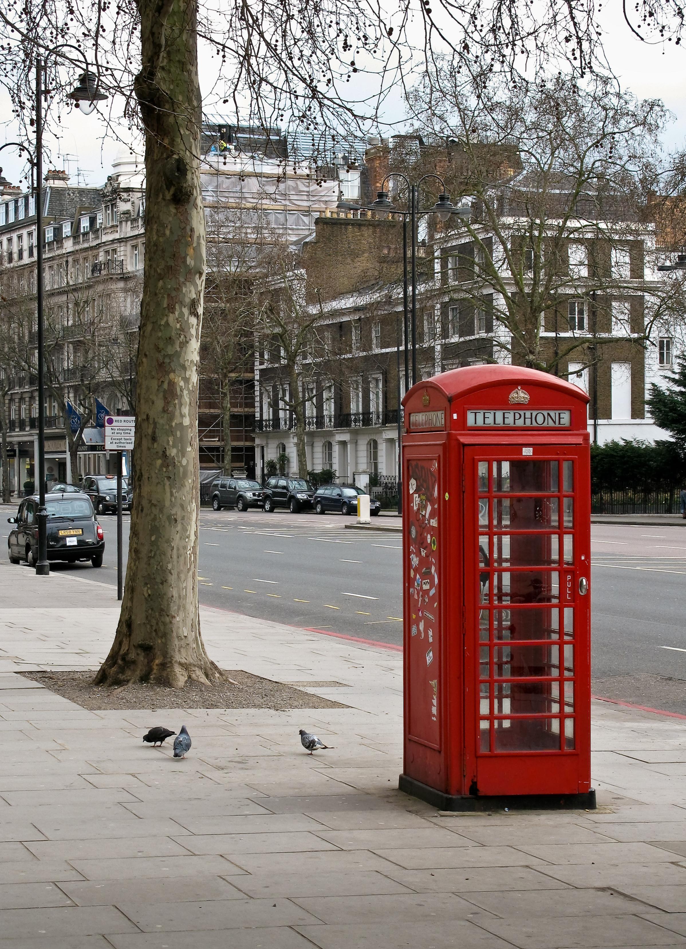 La evolución de las cabinas: de llamadas telefónicas a bibliotecas, puestos de flores o puntos wifi