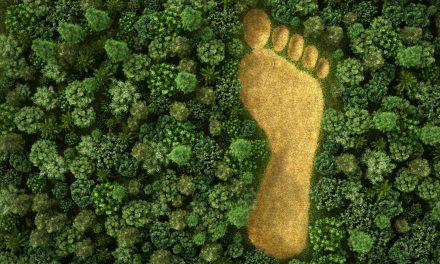 ¿Qué es la revolución ESG?