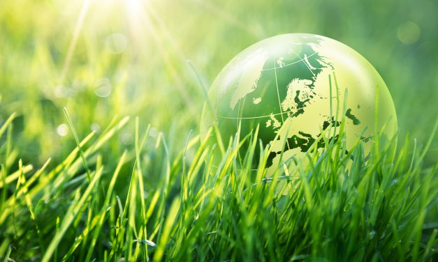 Día de la Madre Tierra: cómo contribuir desde la inversión al cuidado del planeta