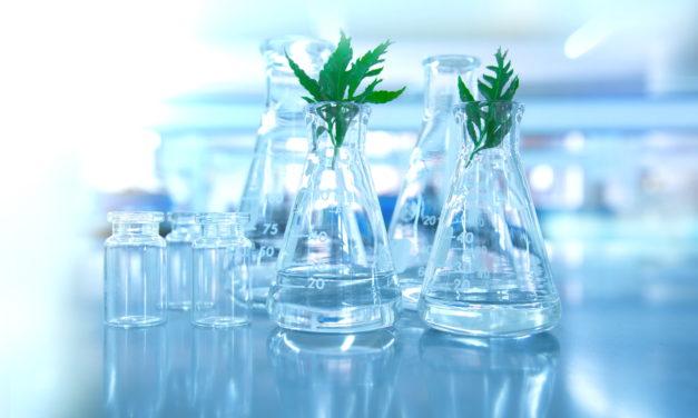Las estrategias de inversión de la ESG