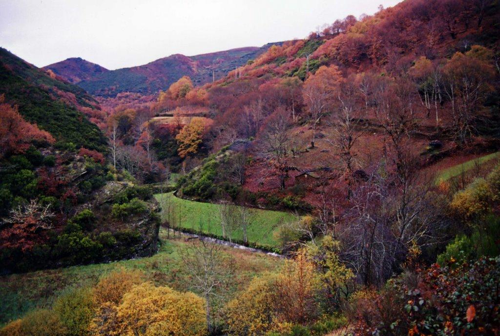 Disfruta del otoño conociendo estos parajes naturales