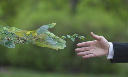 Andbank España redefine la inversión ESG con un nuevo fondo que busca un impacto medible