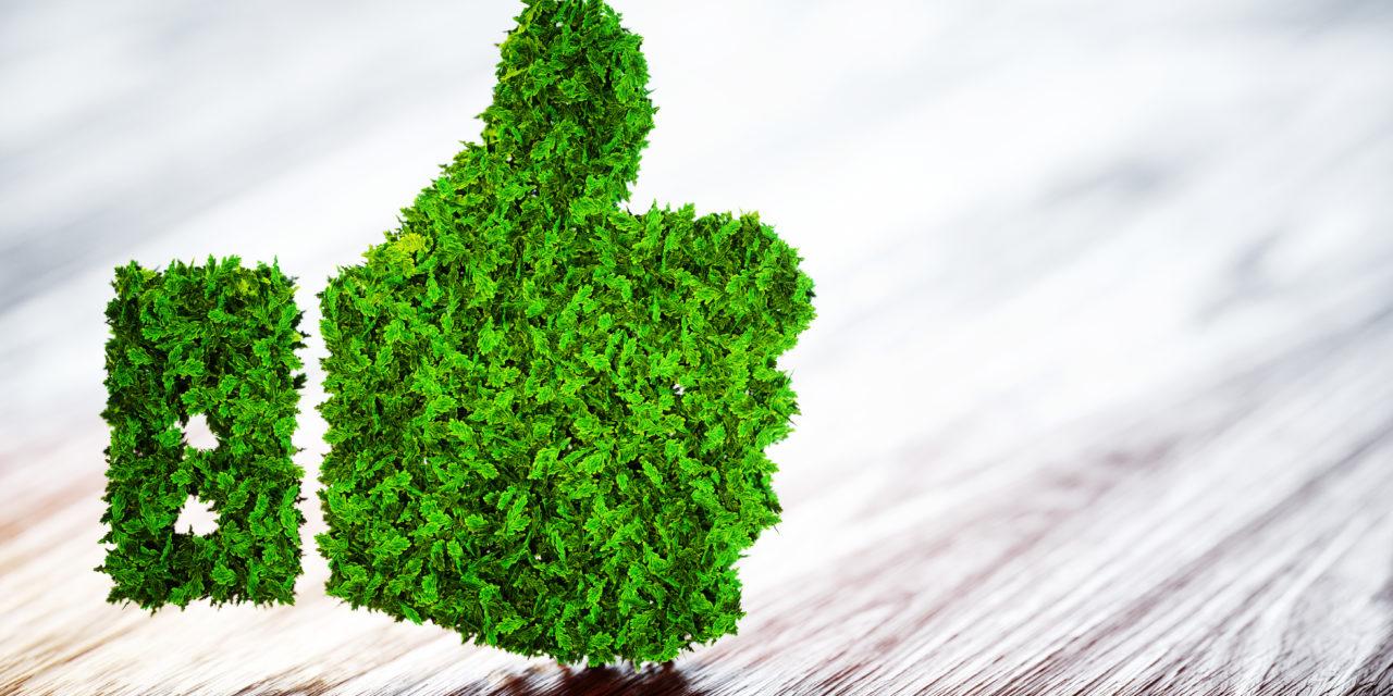 Nueva idea de inversión ESG: bonos verdes de Terna