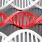 Coronavirus Covid-19: siguen bajando los nuevos casos confirmados