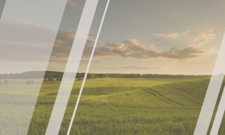 Sigma Global Sustanaible Impact cumple dos años de éxitos